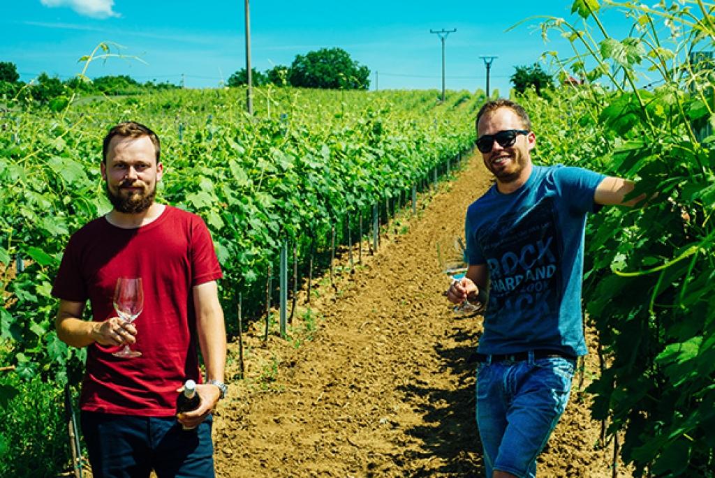 Víno Berta - rodinné vinárstvo zo Strekova